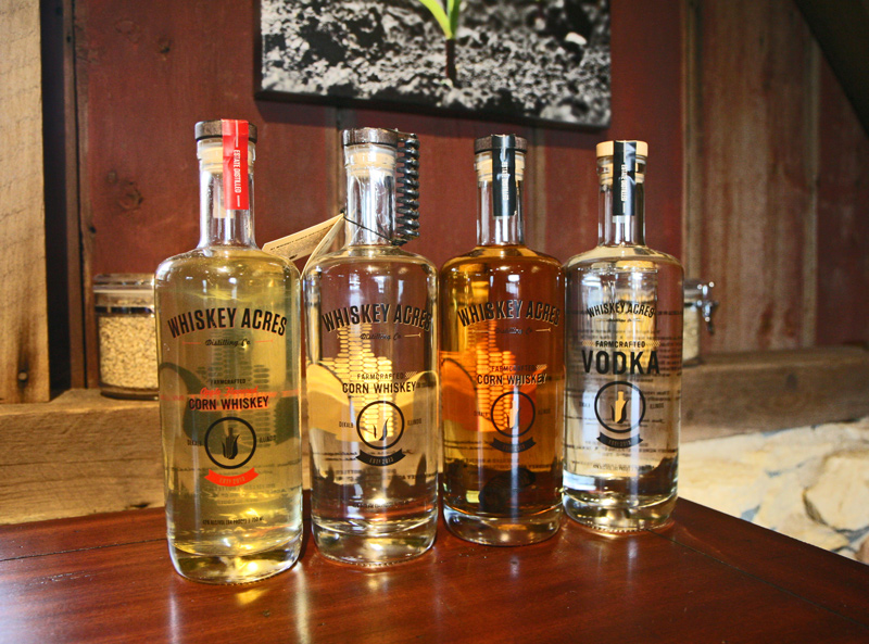 From left: apple-infused whiskey, unaged corn whiskey, corn whiskey infused with a charred oak spiral, vodka