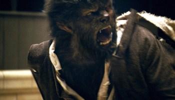 <i>The Wolfman</i>