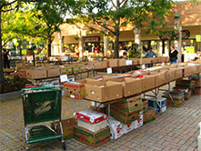 Hyde Park Annual Used Book Sale