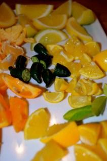 Close up of the citrus