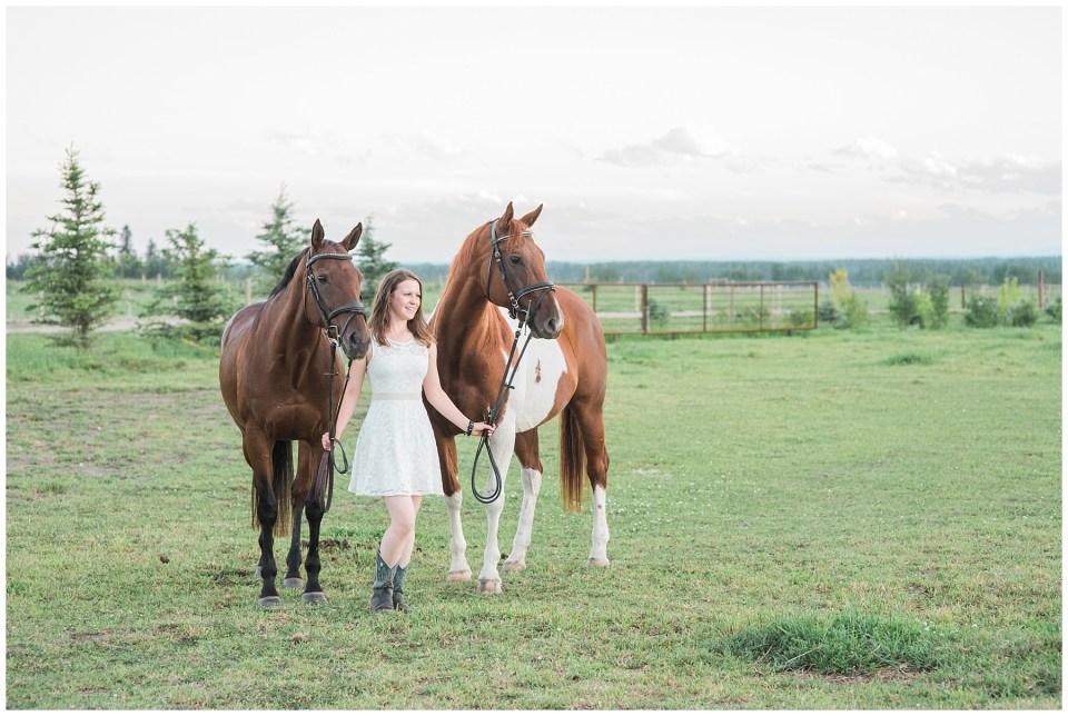 Central Alberta Equine Photographer