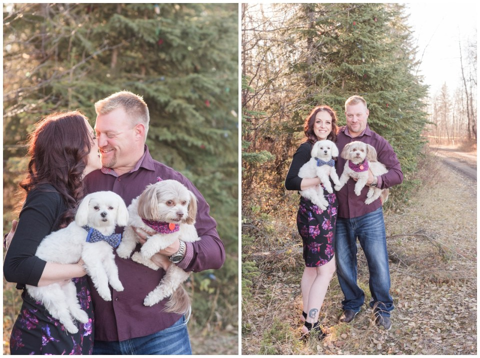 Fall Engagement Photos in Red Deer