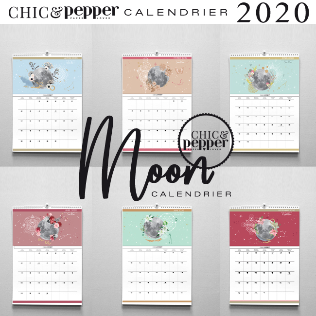 Calendrier Nouvelle Lune 2020.Moon Calendrier 2020 Grand Format A3