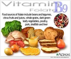 vitamin untuk memori 7