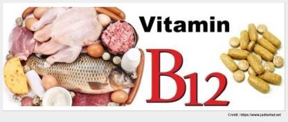 vitamin untuk memori 8