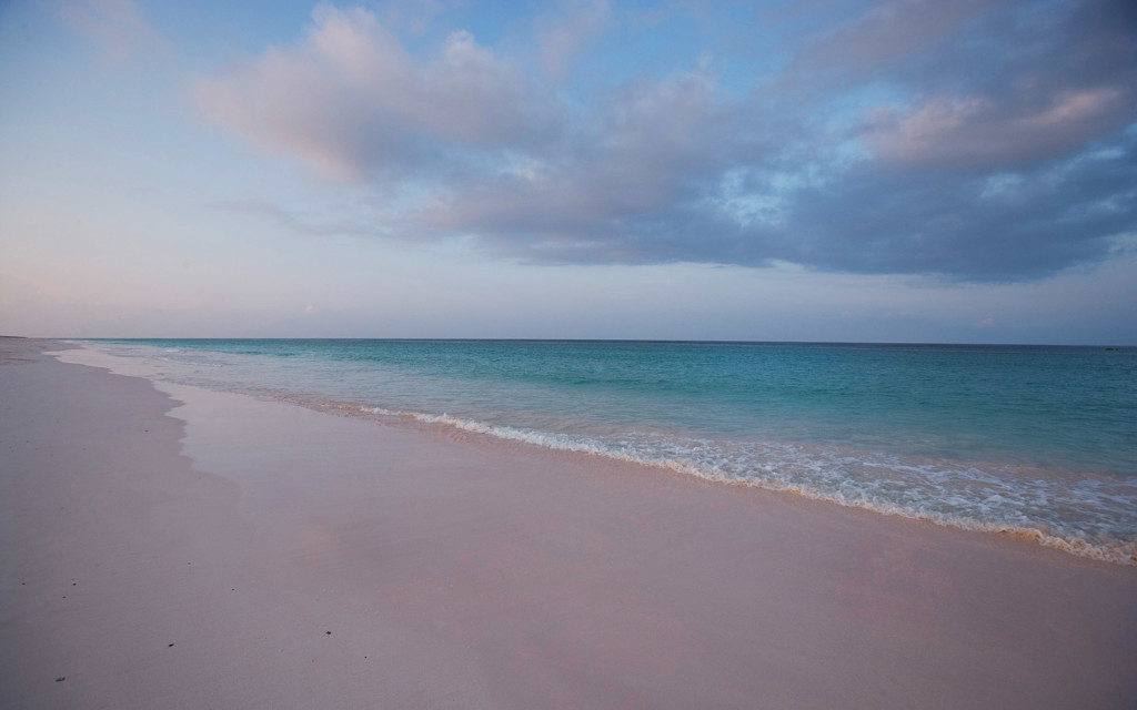 Bahamas Wedding Reception From Harbour Island To The Exumas
