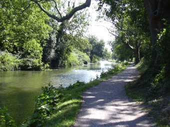 Chichester canal and towpath north of Cutfield Bridge