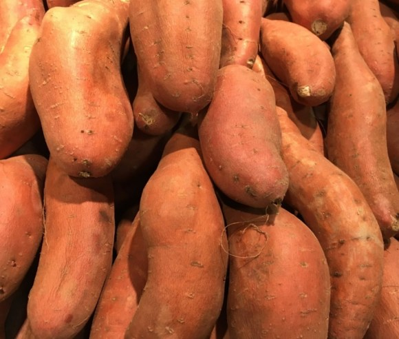 feed your chickens sweet potatoes in moderation to keep them healthy