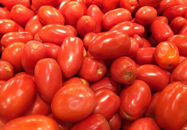 tomatoes on what to feed your chickens to keep them healthy