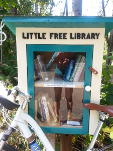 60_Little free library
