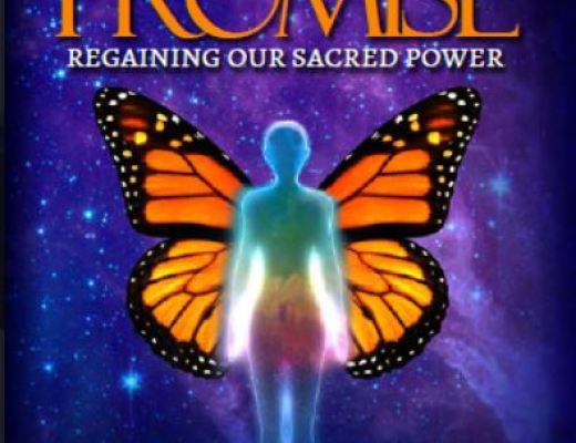GAIL SILER – DECODING THE BUTTERFLY PROMISE