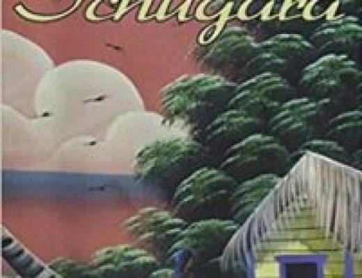 A Place Called Schugara – Joe English – Book Review