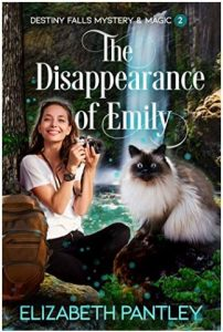 """Alt=""""The Disappearance of Emily by ElizabethPantley"""""""