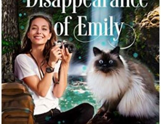 The Disappearance of Emily by Elizabeth Pantley