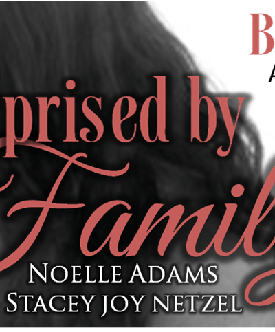 Surprised by Family by Noelle Adams and Stacey Joy Netzel