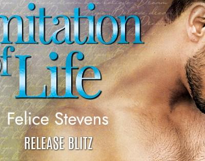 "RELEASE BLITZ: ""Imitation of Life"" by Felice Stevens"