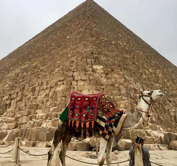 PREPARATIVOS PARA VIAJAR A EGIPTO