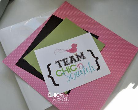 Team chic n scratch