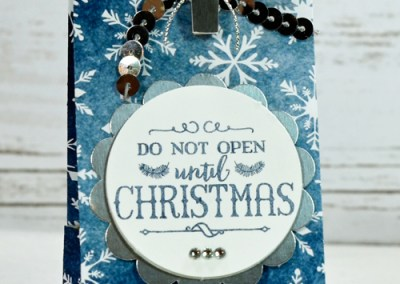 12 Days of Christmas 2015 Day 5