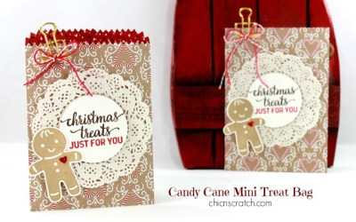 Candy Cane Mini Treat Bag
