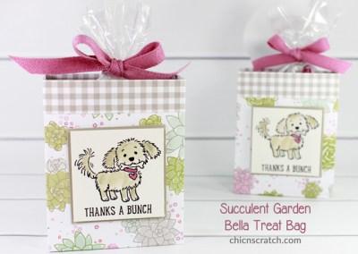 Succulent Garden Bella Treat Bag
