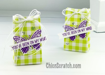Butterfly Gala Mini Gift Bag