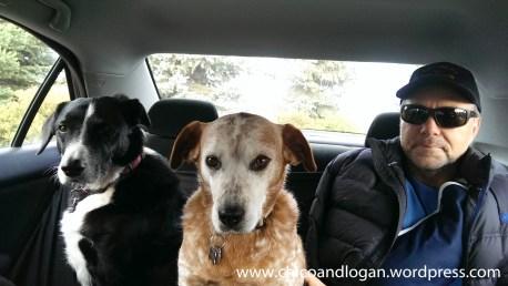 10-tryingtimes-backseat