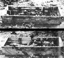 Corpos encontrados próximos ao Bunker - Hitler e Eva