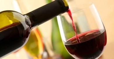 Beber vinho todos os dias melhora o humor e o bem-estar, diz nutrólogo