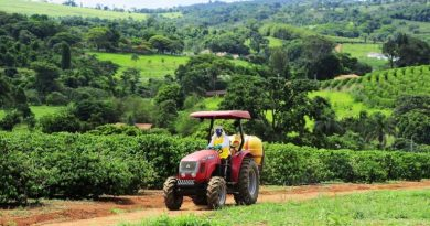 Relatório da ONU pede nova destinação para US$ 470 bilhões de suporte à agricultura que distorce os preços e nos afasta de metas ambientais