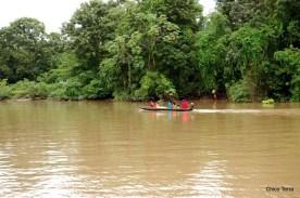 © 2008 -http://chicoterra.com - meio de transporte no Bailique - pequeno barco a motor