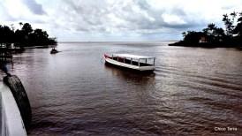 Exposição Amazônia - Chico Terra (39)