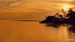 Exposição Amazônia - Chico Terra (74)
