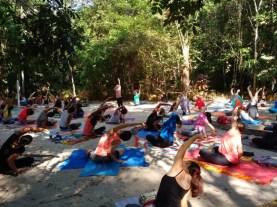 Hatcha Yoga - Parque do Mindu