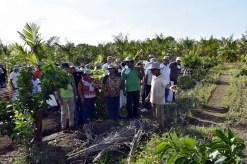 Sebrae-Abimael Aviz-Seminario Agroecologia (8)