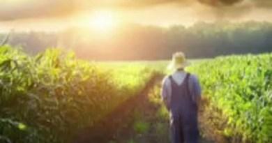 Momento Espírita: Nossa dádiva