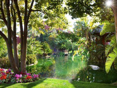asia gardens jardin