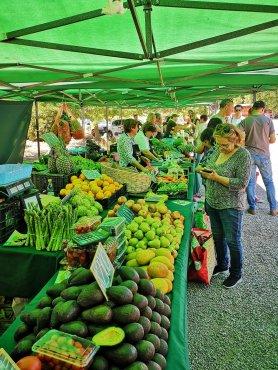 8. Mercado Campesino