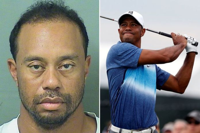 Tiger Woods breaks silence: Alcohol was not involved