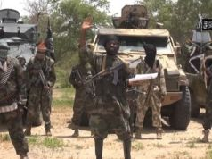 Boko Haram mocks Army, calls Buhari 'a small ant' over Shekau