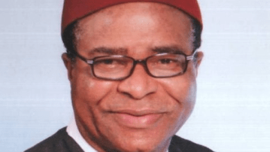 Soldier Deployment: National Assembly should have initiated impeachment process against Buhari