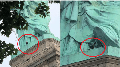 Black female protester spotted climbing the statue of liberty (Video)