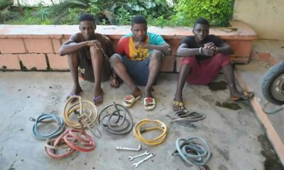 See Photos of three-gang transformer vandals after being arrested in Niger State