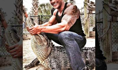 American Actor The Rock Tames Alligator That Have Ripped Off Human Parts