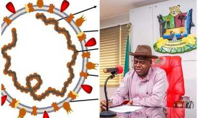 See Coronavirus status of 140 tested persons from Bayelsa state