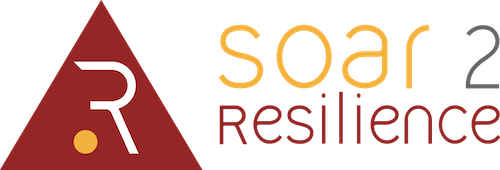 Soar 2 Reslience
