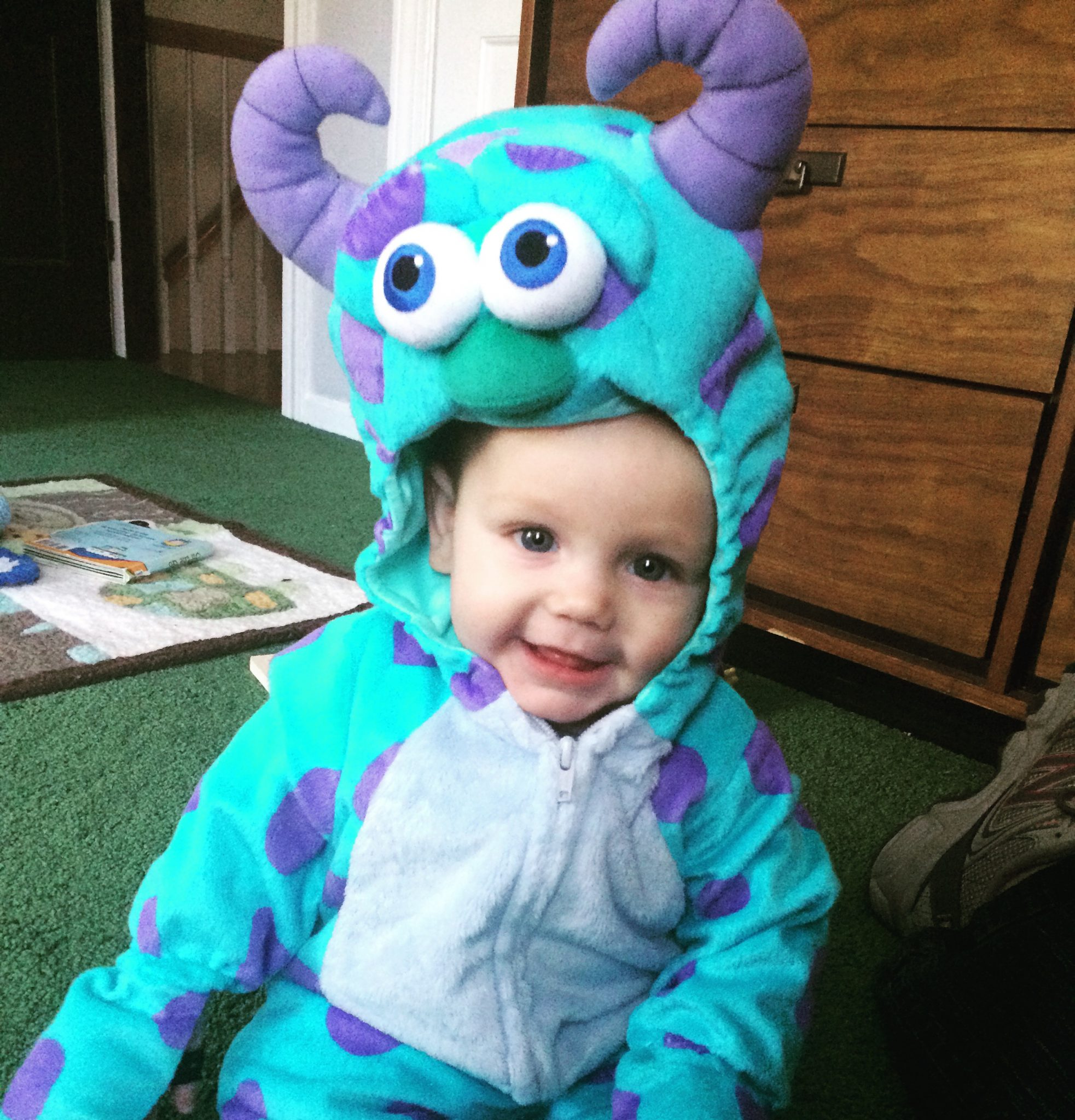 Halloween Sully