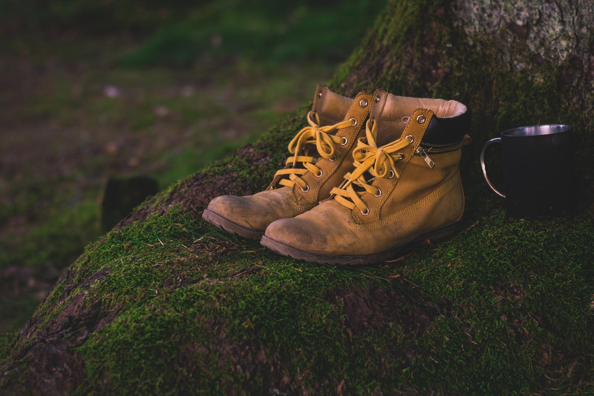 shoes-1638873_1920