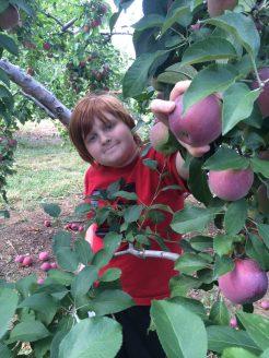 Nick Picking Apples