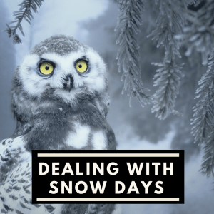 Dealing with snow days as a working mom